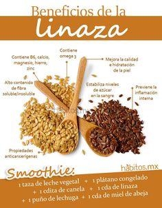Hábitos Health Coaching | BENEFICIOS DE LA LINAZA