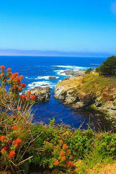 ~~Big Sur | California by Celeste Marie Photography~~