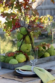Sweet Something Designs: Harvest Green Tablescape. great way to use osage oranges (or hedge apples as some call them) in an arrangement Thanksgiving Tablescapes, Thanksgiving Decorations, Outdoor Thanksgiving, Thanksgiving Ideas, Decoration Buffet, Table Decorations, Centerpieces, Fall Arrangements, Autumn Decorating