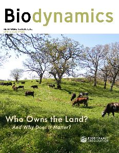 Community Supported Agriculture: An Introduction to CSA | Biodynamic Association