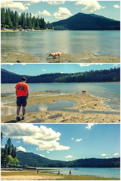 Bass Lake, California. The water level is lower than usual this summer due to California's record-breaking drought. It's still a stunning place!