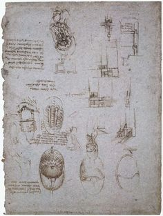 Studies of the Villa Melzi and anatomical study, 1513 - Леонардо да Винчи