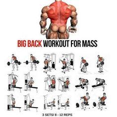 Big Back Workout step by step tutorial. back day. back workout. Gym Workout Chart, Step Workout, Gym Workout Tips, Fitness Workouts, At Home Workouts, Fitness Tips, Workout Plans, Traps Workout, Back Workouts For Men
