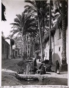 Donald McLeish (1879-1950) Village life, El Marg, near Cairo, Egypt, circa 1920