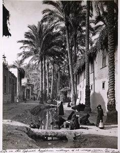 Donald McLeish (1879-1950) Village life, El Marg, near Cairo, Egypt, circa 1920