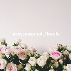 The lovely Laura and I have started an Instagram challenge, and we'd love you all to join in. Inspired by the beauty of each season, we are asking you to add #myseasonof_florals to you floral photo...