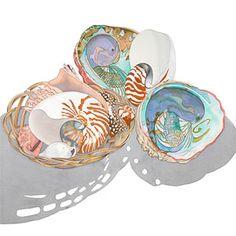 Sally Baker Watercolors - Shells and Shadows