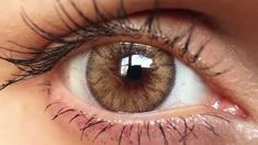 Desio Caramel Brown Coloured Contact Lenses - Close Up HD