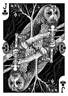 Strigiformes Owls Playing Cards by Renee LeCompte - Jack of Clubs | more here: http://playingcardcollector.net/2014/11/26/owls-strigiformes-playing-cards-by-renee-lecompte/