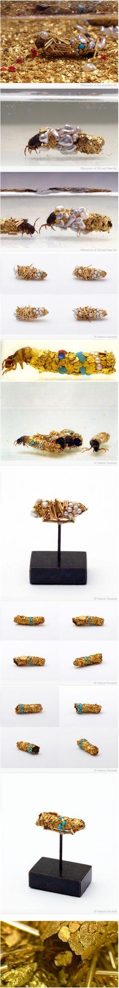 INSECT-ART (artiste Hubert Duprat & insect trichoptères)