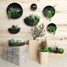 diy hanging planter bags - Home Dekoration Plant Wall Decor, House Plants Decor, Hanging Succulents, Hanging Planters, Outdoor Wall Planters, Hanging Terrarium, Hanging Flower Pots, Diy Plant Stand, Plant Stands