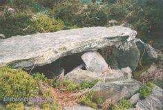 Asturtsalia: L'Aramu, onde'l calizu reina