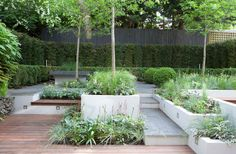 The Landscape Architect - Garden Design, London,UK 07875 203901