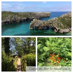 La costa de Llanes #ParaísoNatural vía @AsturPlaya - all the beaches in Asturias, Spain  pic.twitter.com/tYoDhLdezf