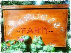 Rabbit Nursery for my friend Samuele