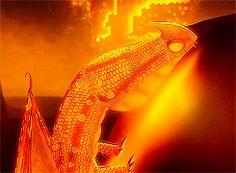 how to train your dragon dragons httyd toothless stormfly riders of berk meatlug snotlout hookfang Night Fury avatava Hideous Zippleback red death graphrofberk defenders of berk Deadly Nadder gronckle terrible terror whispering death changewing thunderdrum screaming death barf & belch fireworm scauldron typhoomerang monstrous-nightmare