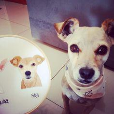 Pet Lovers, Pet Portraits, Labrador Retriever, Photo And Video, Studio, Pets, Animals, Instagram, Labrador Retrievers