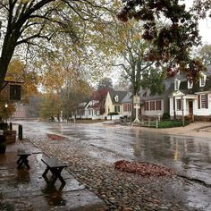 A view down Duke of Gloucester Street on a rainy November day. In the distance you can see the Capitol building and as you scan to the right you'll see Shields Tavern and finally the Kings Arms Tavern.  #colonialwilliamsburg #virginia #thedogstreetpatriot #loveva #rainyday #autumn #18thcentury by the_dog_street_patriot