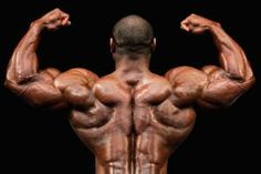 Lose body fat and gain muscle with a good bodybuilding diet. These sample bodybuilding diets will assist you to lose body fat and in build lean muscle mass, and also includes rules for a good diet for men and women. Bodybuilding Nutrition, Bodybuilding Workouts, Bodybuilding Motivation, Bodybuilding Plan, Bodybuilding Pictures, Bodybuilding Training, Diets For Men, Push Day, Shoulder Muscles