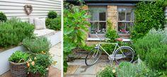 Leopoldina Haynes' garden, grey bicycle and grey windows Amazing Gardens, Beautiful Gardens, Small Courtyard Gardens, Patio Gardens, Hampton Garden, Townhouse Garden, London Garden, Little Gardens, White Gardens