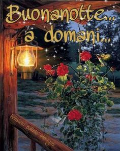 Buona notte Good Night, Good Morning, Italian Greetings, Italian Memes, Neon Signs, Painting, Luigi, Whisky, Snoopy