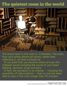 Quietest room in the world…does it make me weird that i really want to try this?