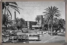 Maspalomas - hotel Oasis año 1969 #fotoscanariasantigua #tenerifesenderos #fotosdelpasado #canariasantigua #canaryislands #islascanarias #blancoynegro #recuerdosdelpasado #fotosdelrecuerdo