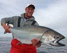 Chinook salmon at Langara Island Lodge. Haida Gwaii, British Columbia, Canada