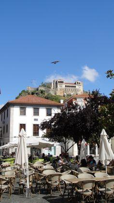 A ave do castelo de Leiria.