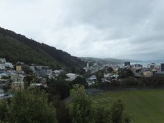 Wellington, NZ's capital, in late October (spring). Taken from the Botanic Garden. It's such a beautiful city, built around Wellington Harbour, but famously windy--the reason the rugby team is called the Hurricanes. All Blacks, Botanical Gardens, Rugby, New Zealand, Dolores Park, October, Vacation, City, Spring