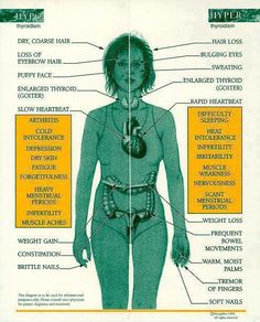 Thyroid problems often go hand-in-hand with Fibromyalgia