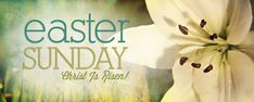Happy Easter Sunday Images Pictures Photos Jesus Pics Free happy easter sunday wishes Related