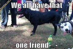 We All Have That One Friend,  Click the link to view today's funniest pictures!
