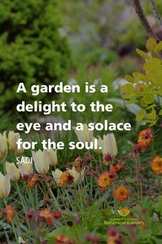 Garden Works, Garden Art, Garden Plants, Small Courtyard Gardens, Outdoor Gardens, Gardening Quotes, Gardening Tips, Garden Sayings, Bright Quotes