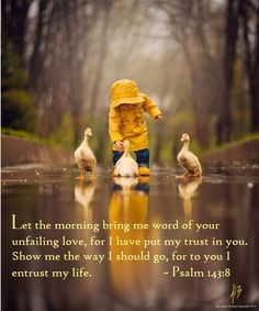 Making memories in her yellow raincoat with her yellow duck friends in the rain So cute! So adorable! Baby Animals, Cute Animals, Cute Pictures, Beautiful Pictures, Amazing Photos, Beautiful Things, Yellow Springs, Foto Baby, Jolie Photo
