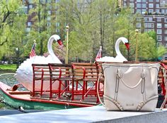 Took my #fabtravelingbag from Marshalls to ride the Swan Boats in Boston! #fabfound