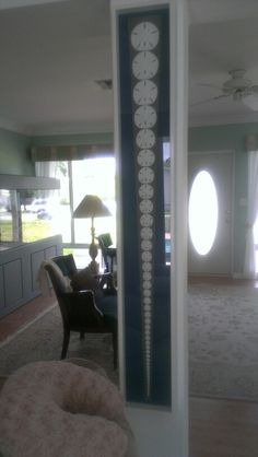 Great way to display sand dollars picked up at beach