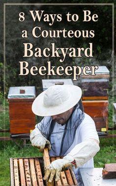 Backyard Beekeeping #backyardbeekeeper