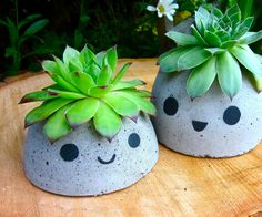 These cute concrete planters are an adorable addition to any home or garden! The molds are made of recyclable materials and concrete mix is very inexpensive to buy. You can switch up the plants in these planters to give these little guys a fresh new 'do.