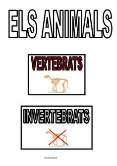 Animals vertebrats i invertebrats