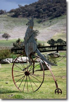 Kangaroo riding a penny farthing bike - comprises vintage combine wheel, tin and scrap metal by Richard Nagel  Roo-Cycle using vintage combine wheel, corrugated metal