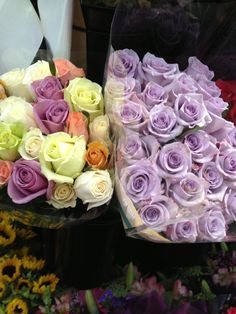 Purples flowers at Costco ;)