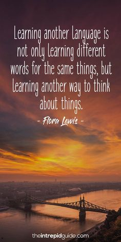 List of short inspirational quotes for students inspirational quotes for language learners flora Good Education Quotes, Learning Quotes, Inspirational Quotes For Students, Short Inspirational Quotes, Inspiring Quotes, Motivational Quotes, Awesome Quotes, School Quotes, School Humor