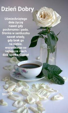 Good Night Sweet Dreams, Good Morning, Vegetables, Food, Humor, Gallery, Sentences, Good Morning Funny, Photo Illustration
