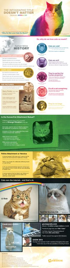 Why do we Love Cats? Take a look at this infographic, Miau Miauuuu reasons to love them ! Thanks Mashable for this beautiful present