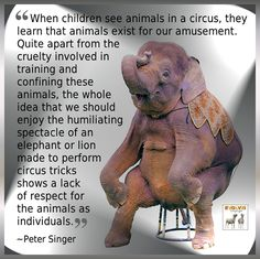 BOYCOTT THE CRUELEST SHOW ON EARTH!  Please don't support brutal animal cruelty!