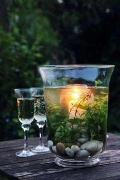 Einen Unterwassergarten in einem alten Windlicht arrangieren. Dann eine Kerze dahinterstellen.