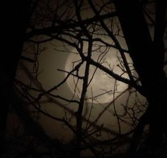 love this moon pic