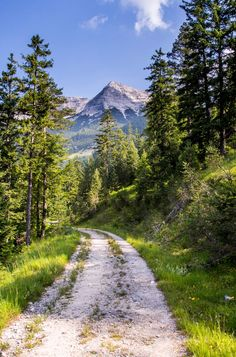 A country road to the mountains (Austria) by Olli H. cr.