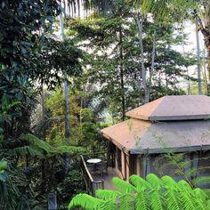 Meilleurs hôtels à Bali (à tous les prix) - Digital Nomadess Ubud, Glamping, Bungalow, Villa, Le Prix, Great Hotel, Architecture, Cabin, House Styles